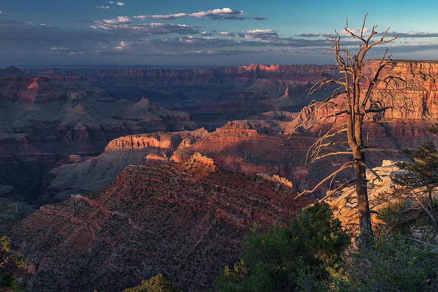 Grand Canyon by Gary Lengyel