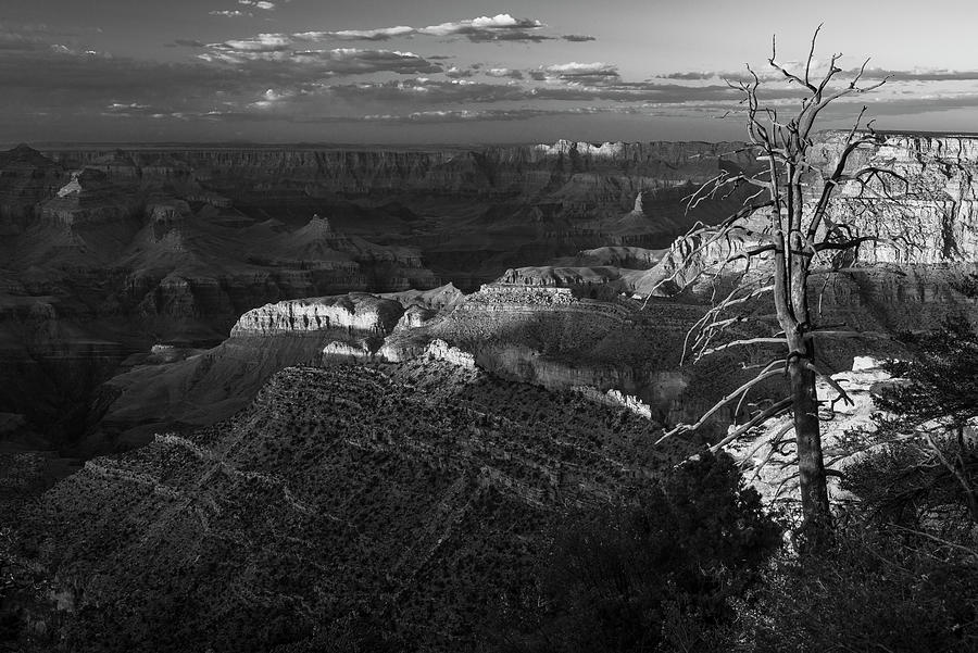 Grand Canyon in Black and White by Gary Lengyel