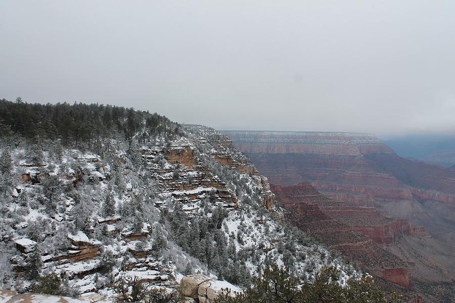 Grand Canyon Photograph - Grand Canyon In Snow by Catherine Stainback