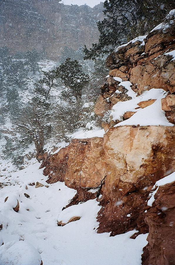 Grand Canyon Photograph - Grand Canyon In Snow by Ruth Sharton