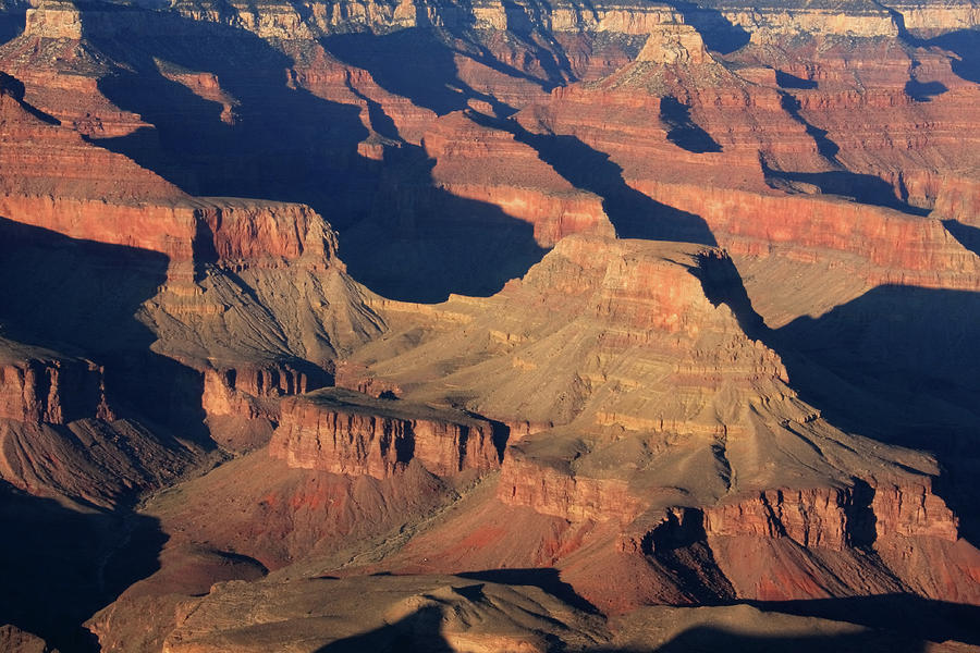 Arizona Photograph - Grand Canyon Light  by Aidan Moran