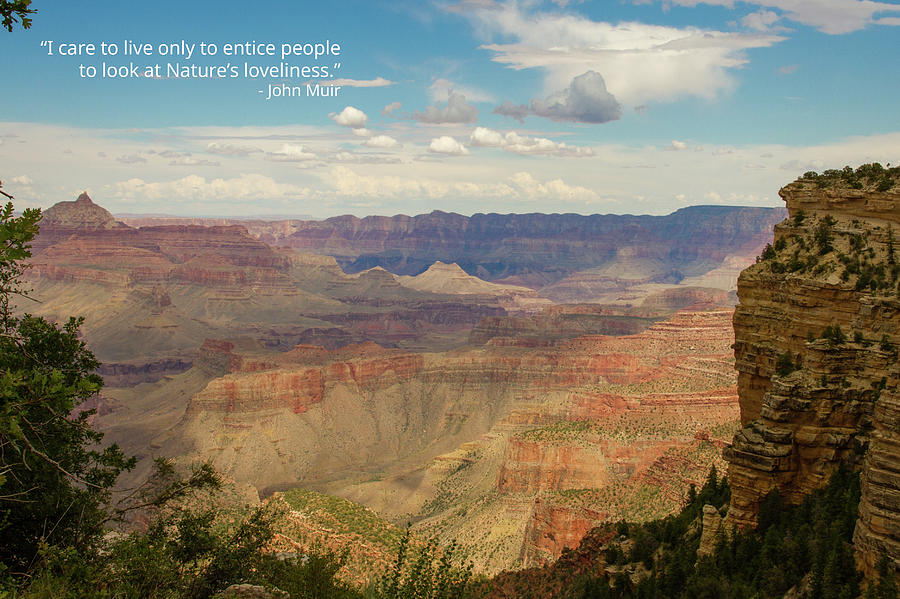 Grand Canyon - Muir 1