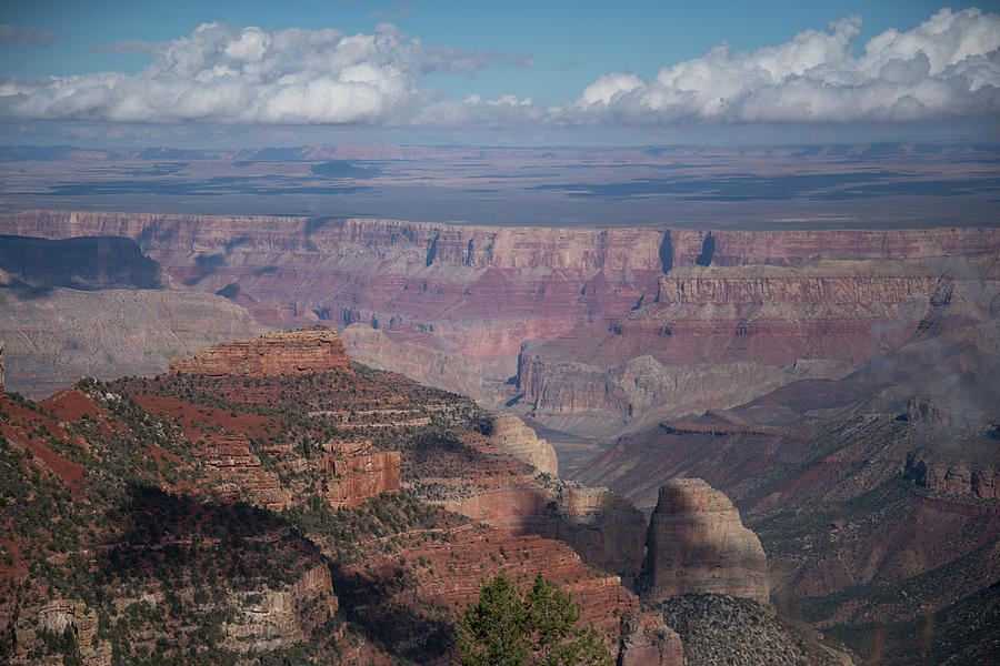 Grand Canyon North Rim Vista Encantada 4 by Frank Madia