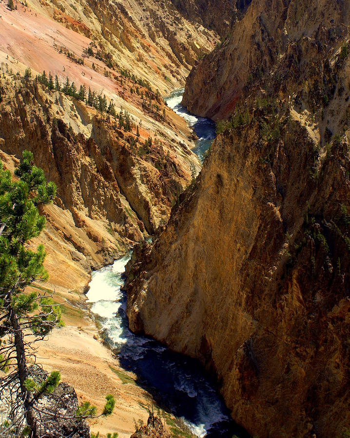 Yellowstone River Photograph - Grand Canyon Of The Yellowstone 2 by Marty Koch