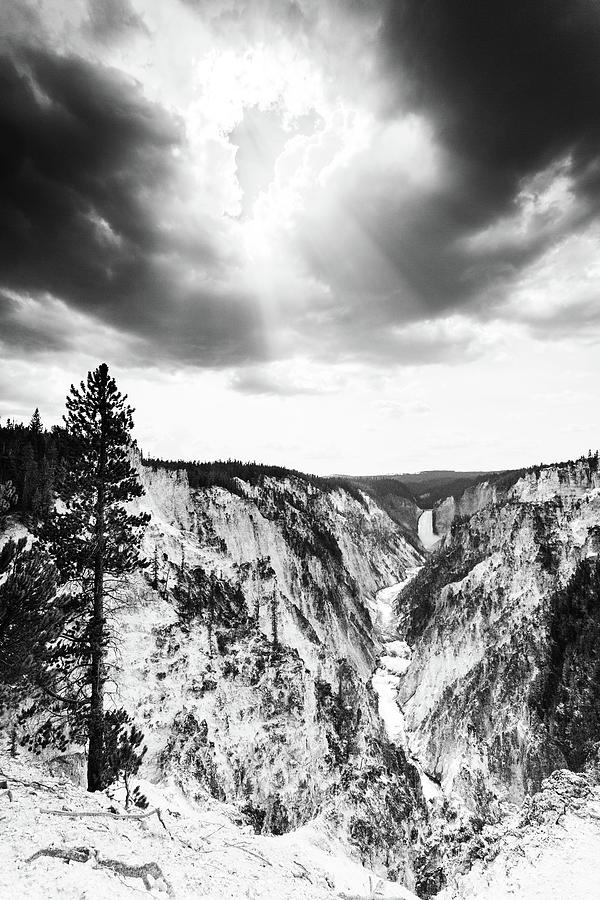 Yellowstone Photograph - Grand Canyon Of The Yellowstone by Alex Conu