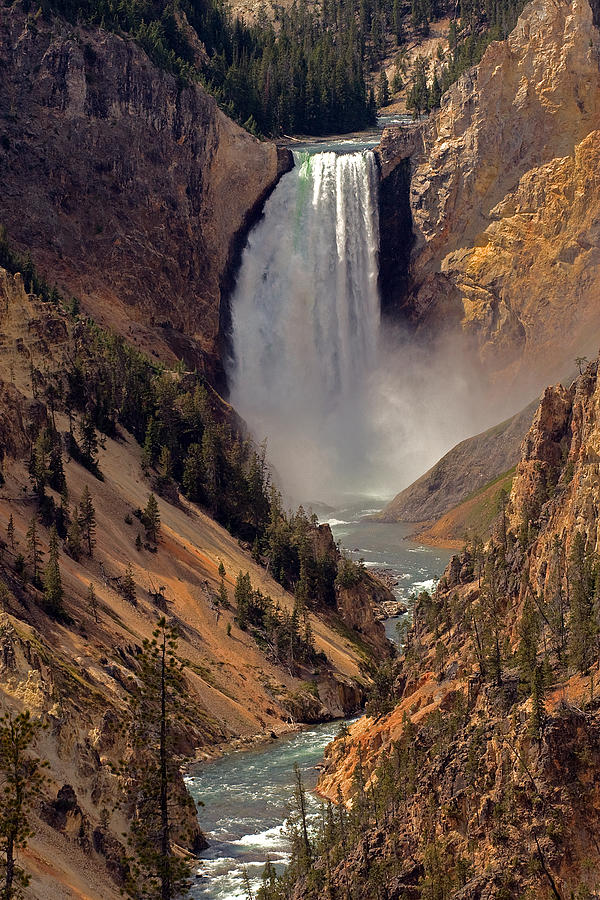 Waterfall Photograph - Grand Canyon Of The Yellowstone by Robert Pilkington