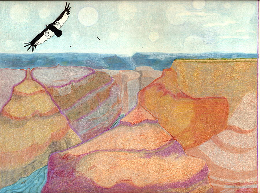 Grand Canyon Drawing by Patricia Pardee