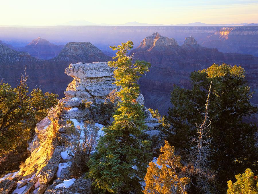Usa Photograph - Grand Canyon Sunrise by Johan Elzenga