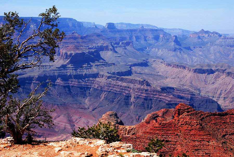 Grand Canyon Photograph - Grand Canyon View by Susanne Van Hulst
