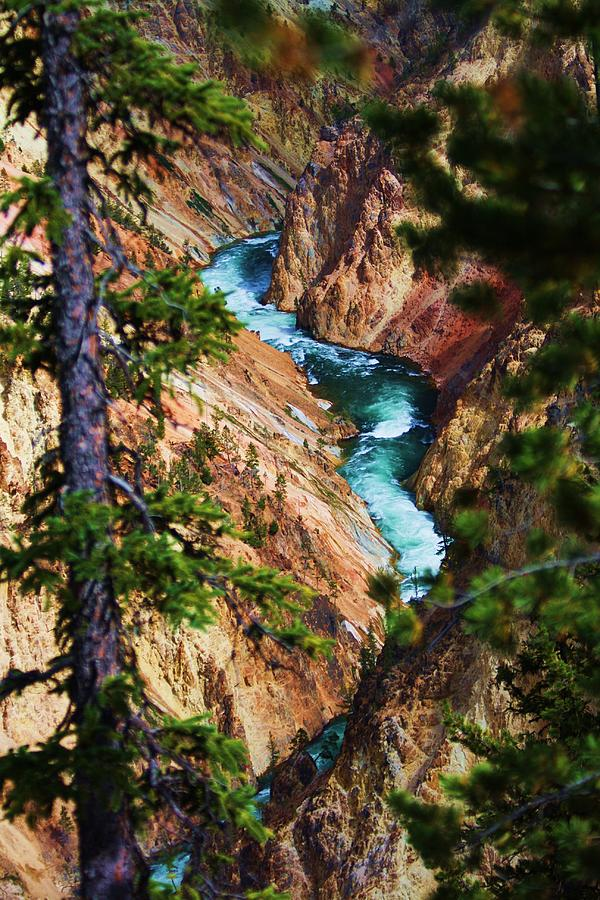 Lanscape Photograph - Grand Canyon  Yellowstone by Russell  Barton