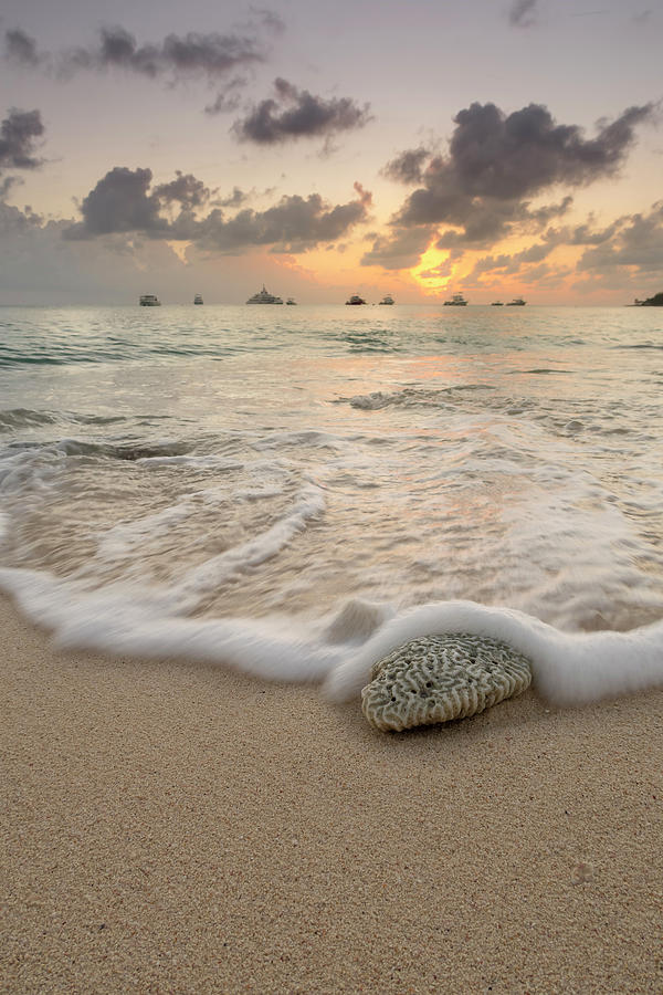 Grand Cayman Beach Coral Waves at Sunset by Adam Romanowicz