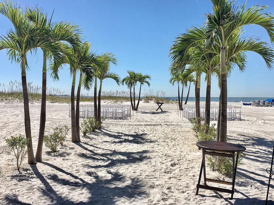 Palm Trees Photograph - Grand Plaza Beach View by Joseph Mari