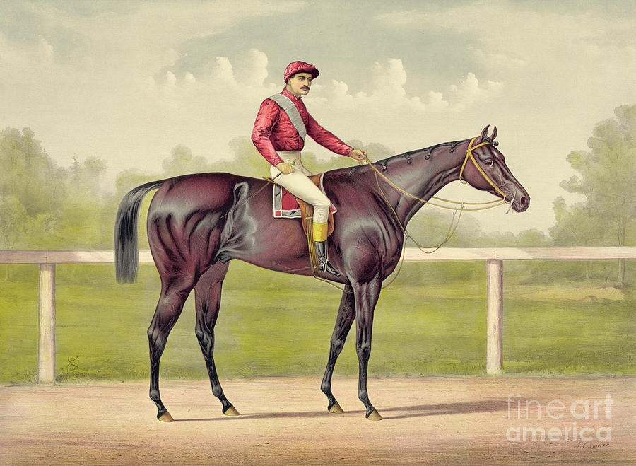 Horse Drawing - Grand Racer Kingston by Currier and Ives