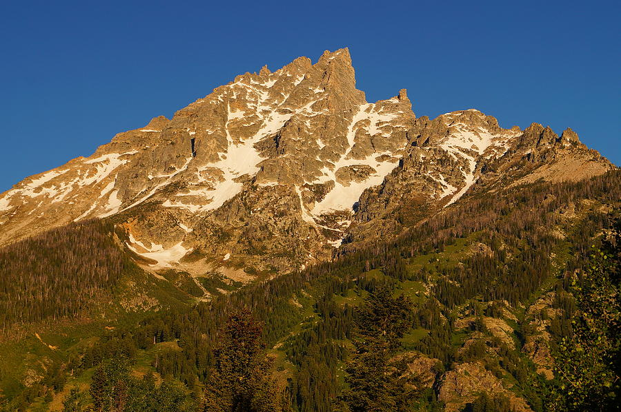 Grand Teton National Park Photograph - Grand Sight by Beth Collins