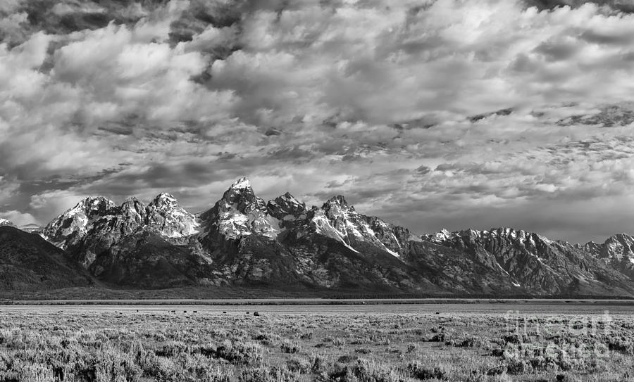 B&w;b+w;black & White;black;white;monochrome;grand Teton;wyoming;mountains;clouds;atmospheric;grand Tetons;scenic;landscape;summer;landscapes;scenics;cloudscape;nature;sandra Bronstein;fine Art;photography;photographs;horizontal;horizontals;monochromes;black And Whites;iconic;tourism;travel;west;western United States;out West;snowcapped;western Landscape;prints;canvas;acrylic;metallic;metal;greeting Cards;notecards;national Park;national Parks;landmark;landmarks; Photograph - Grand Teton Majesty by Sandra Bronstein