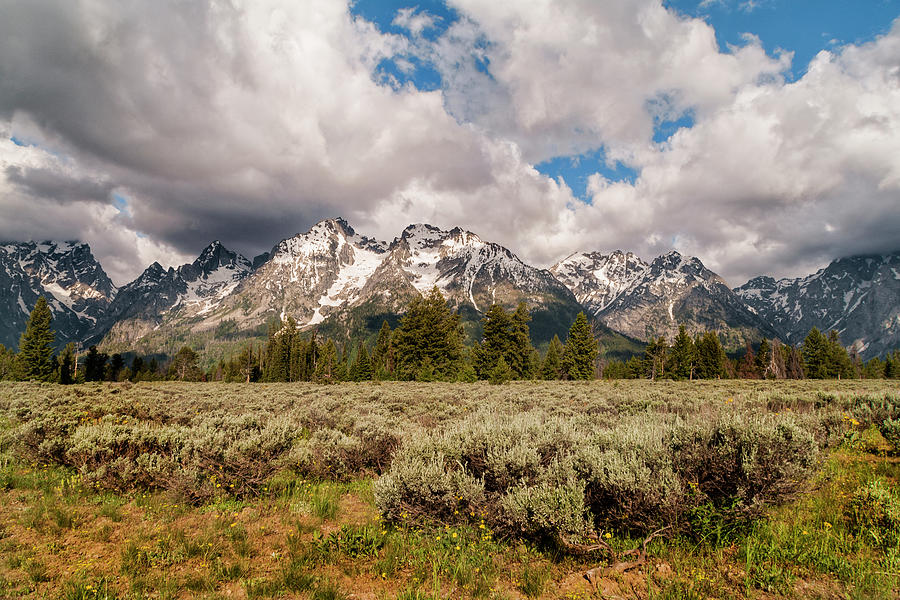 Mountains Photograph - Grand Tetons by Brian Harig
