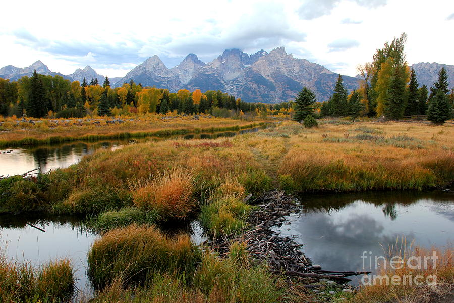 Grand Tetons by Cynthia Mask