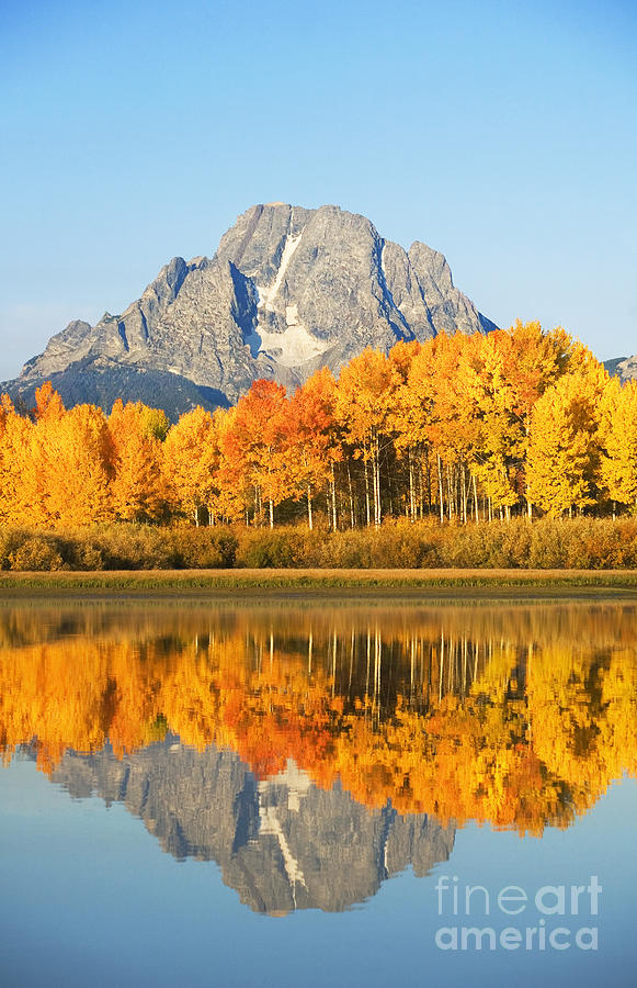 Aspen Photograph - Grand Tetons In Autumn 2 by Ron Dahlquist - Printscapes