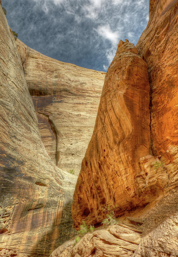 Grand Wash Narrows, Capital Reef NP, Utah by Michael Kirk