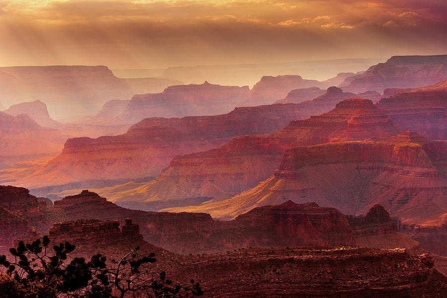 Us Photograph - Grandeur by Mikes Nature