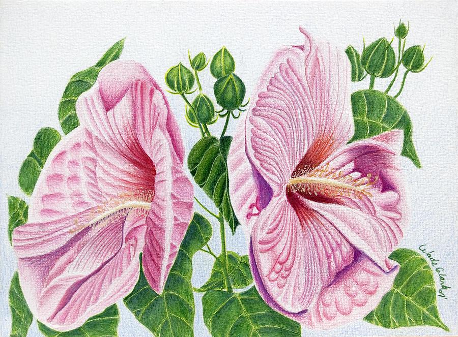 Floral Drawing - Grandma by Wade Clark