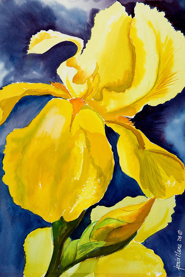 Flower Painting - Grandmas Yellow Iris by Janis Grau