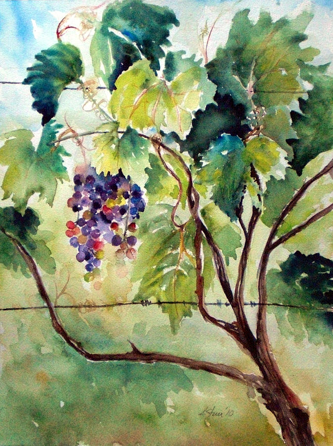Otter Creek Winery Painting - Grape Vines At Otter Creek by Kathy Sturr