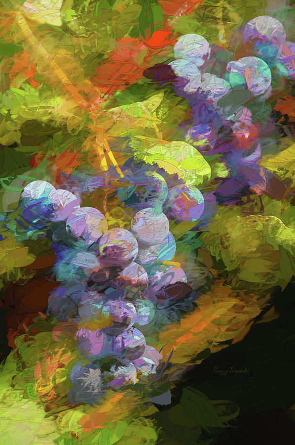 Grapes in Abstract by Penny Lisowski