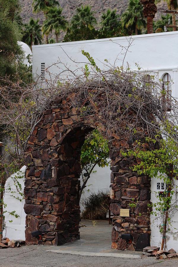 Garden Wall Photograph - Grapevine Covered Stone Garden Door by Colleen Cornelius