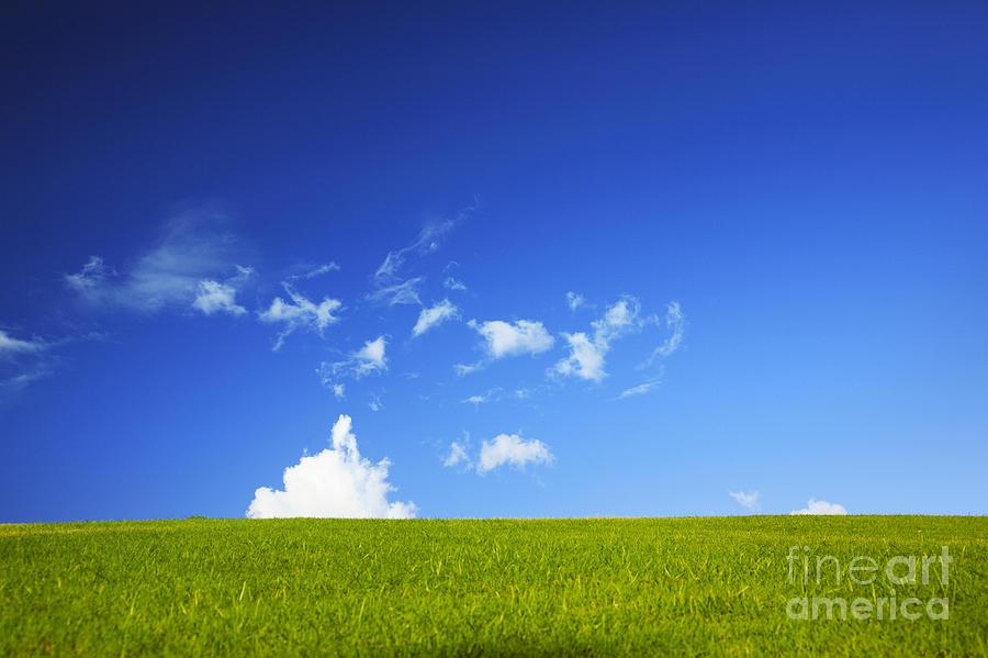 Basic Photograph - Grass Cloud Sky by Brandon Tabiolo - Printscapes