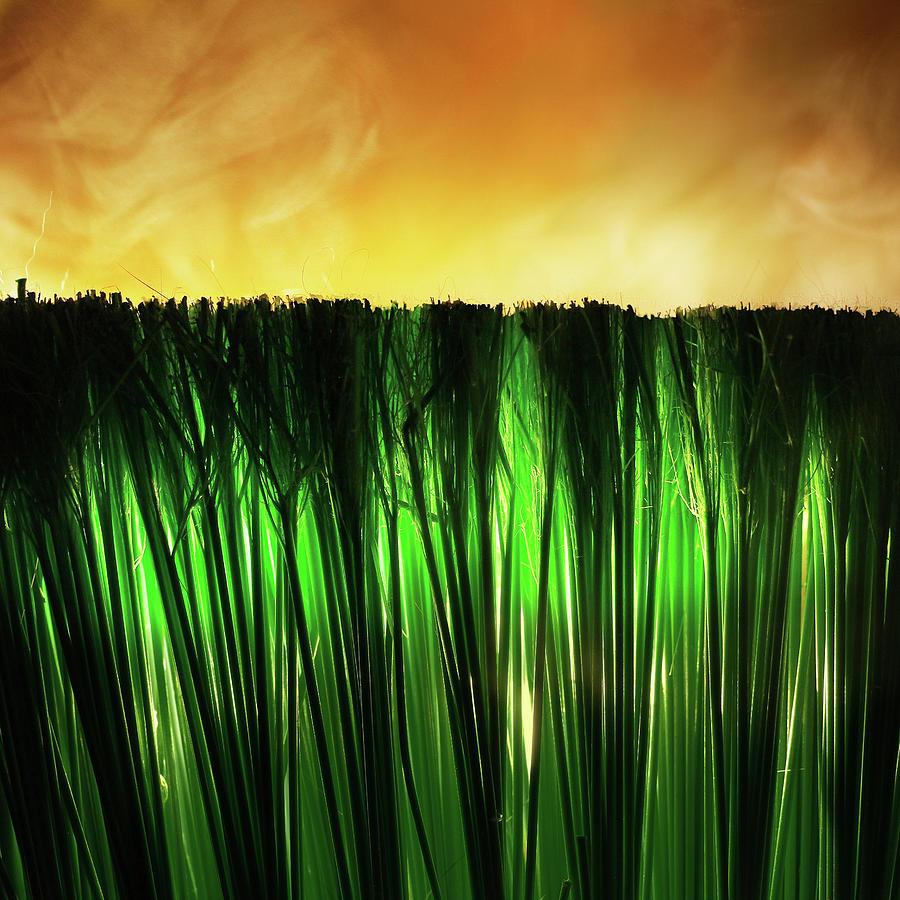 Grass Fire by Stephen Dorsett