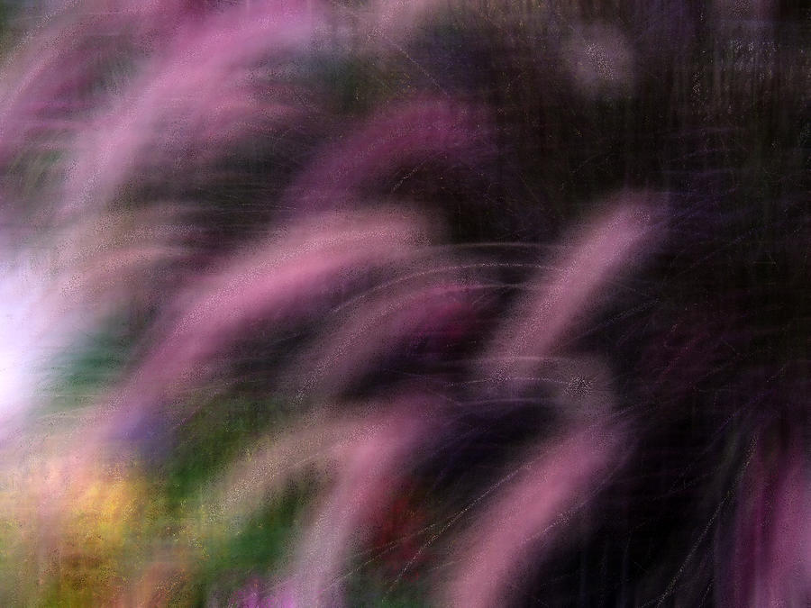 Grass Digital Art - Grasses by Eileen Shahbazian
