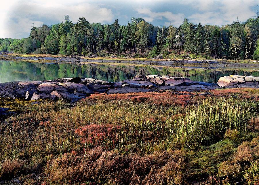 Landscape Photograph - Grasses In Autumn by Joe Maranzano