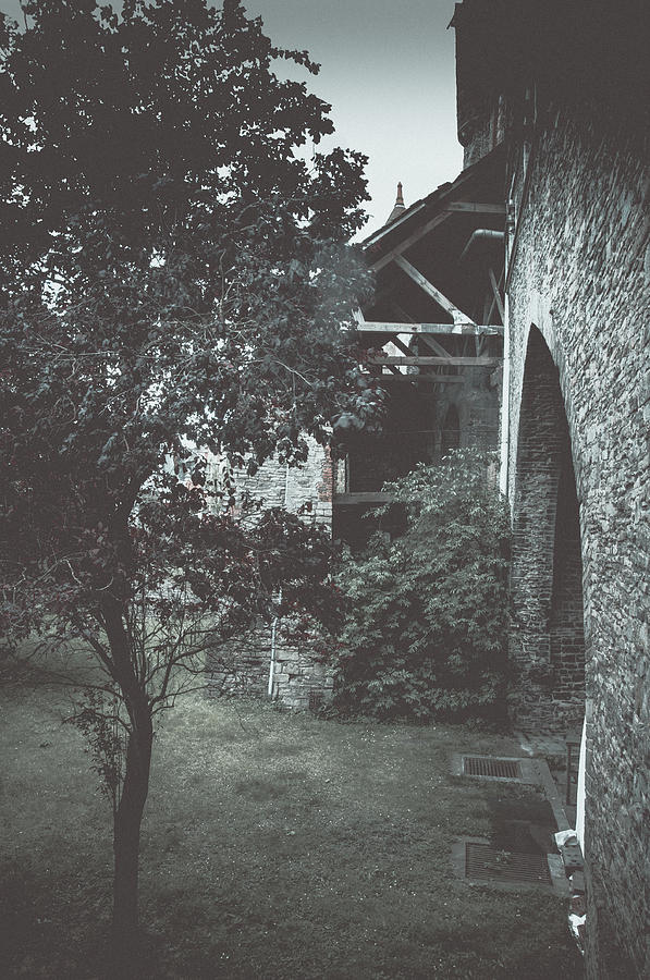 Gravensteen Photograph