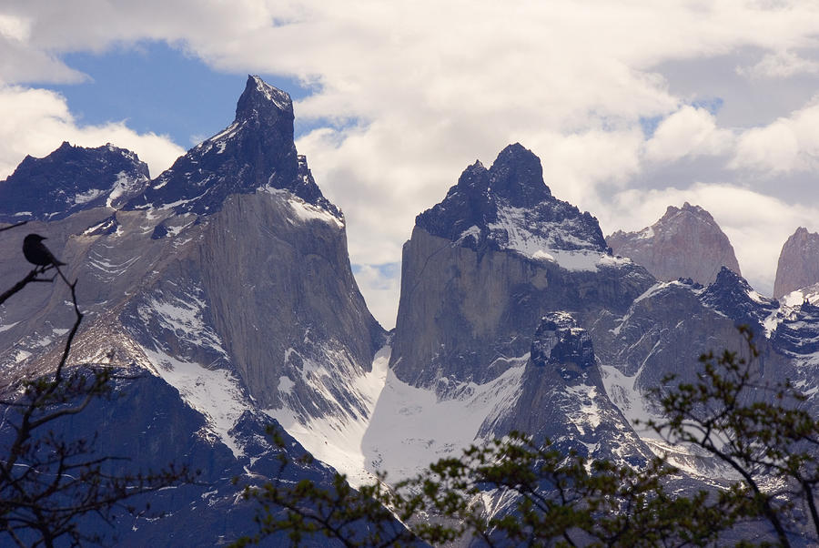 Patagonia Photograph - Gray Glacier Chile by Charles  Ridgway