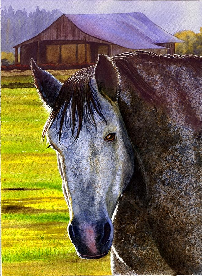 Horse Painting - Gray Horse by Catherine G McElroy