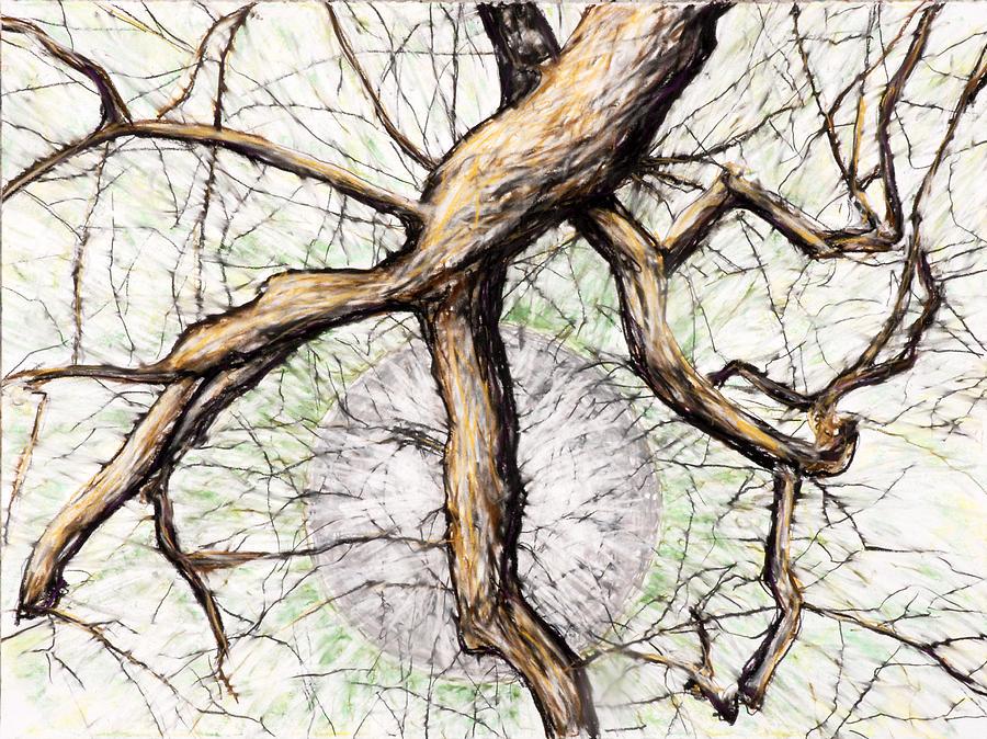 Tree Drawing - Gray Moon Rising by John Terwilliger