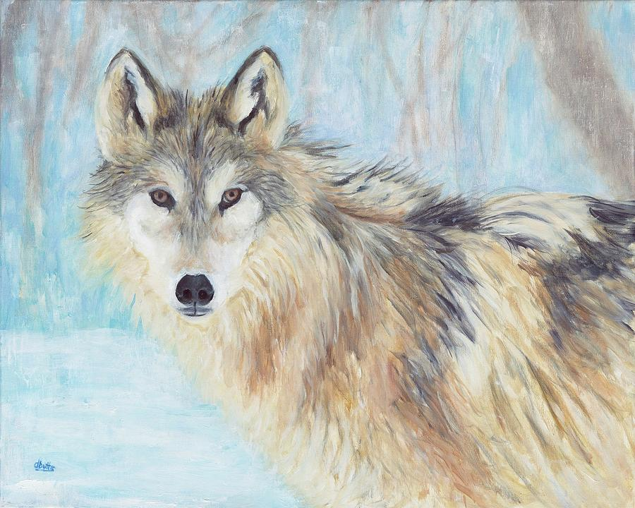 Gray Wolf in Winter by Deborah Butts