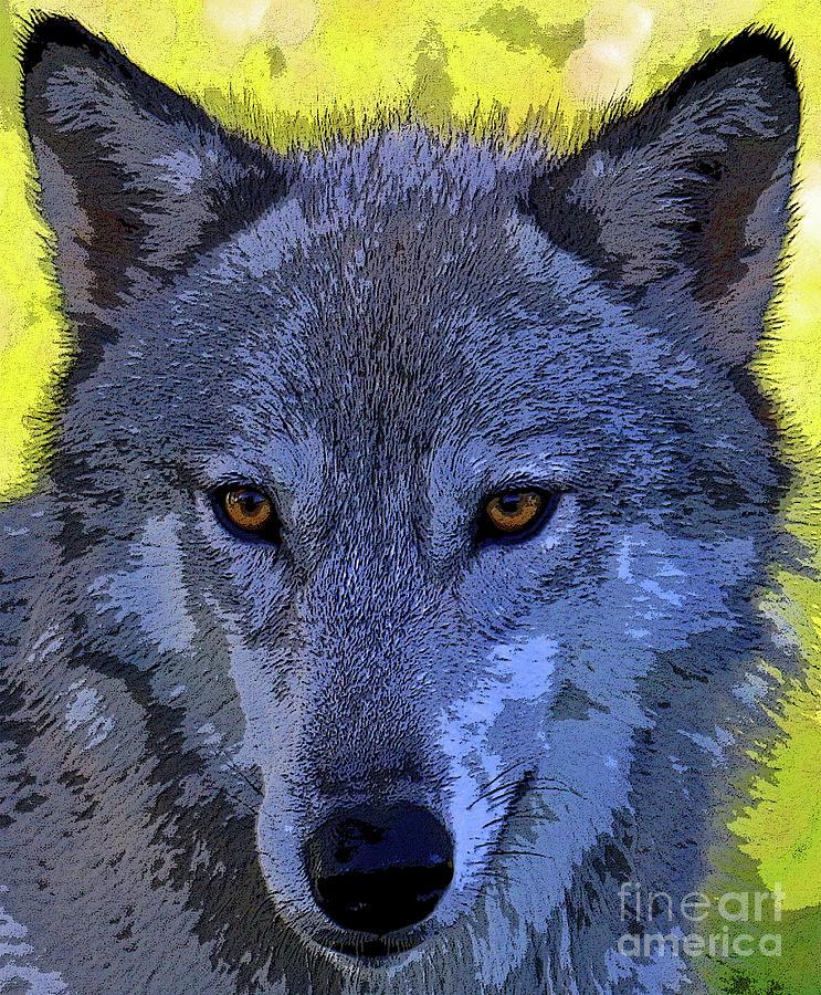 Wolf Photograph - Gray Wolf Portrait by Steve Gass