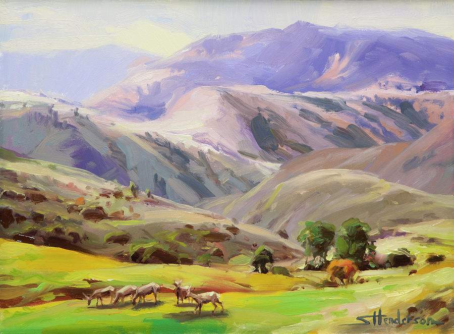 Mountains Painting - Grazing in the Salmon River Mountains by Steve Henderson