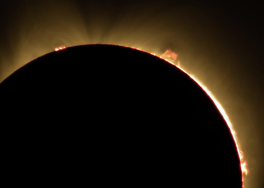 Great American Eclipse Prominence 5x7 as seen in Albany, Oregon. by John King