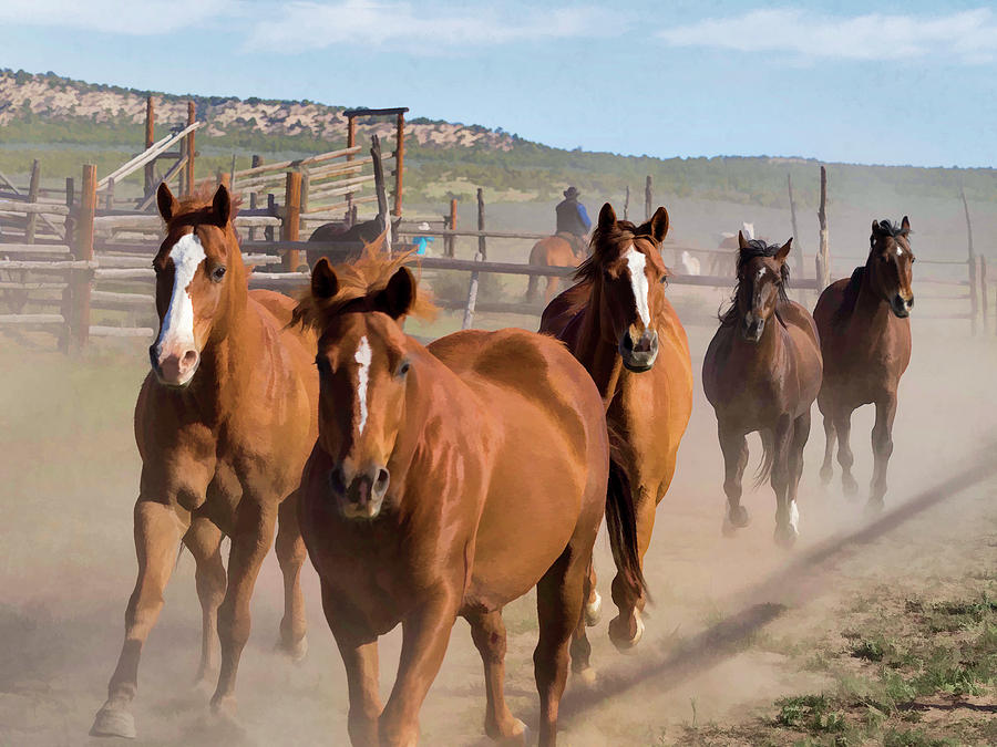 Great American Horse Drive - Coming into the Corrals by Nadja Rider