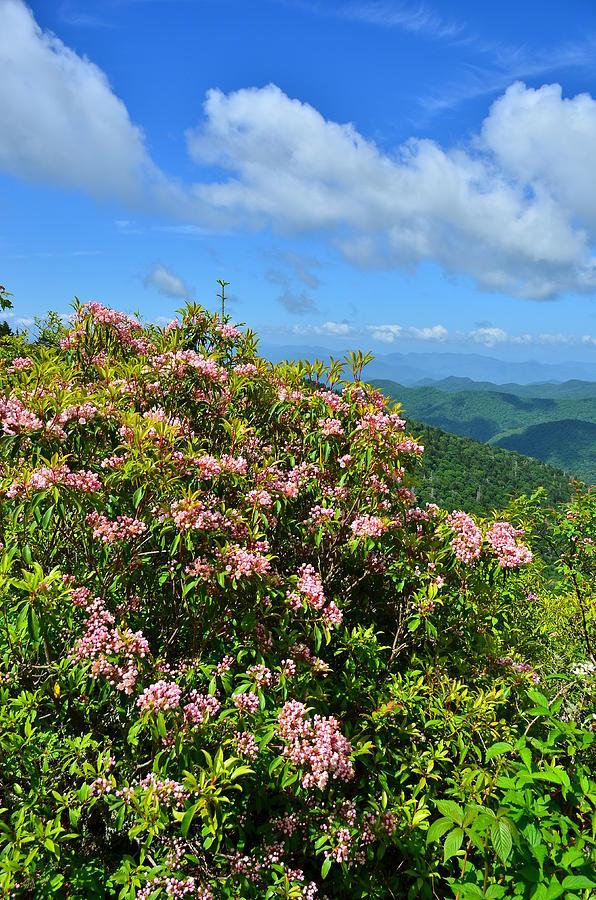 Great Balsam Mountains Along Thye Blue Ridge Parkway Photograph