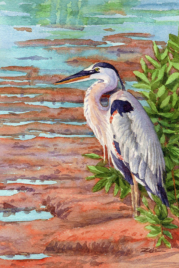 Great Blue Heron in a Marsh by Janet Zeh