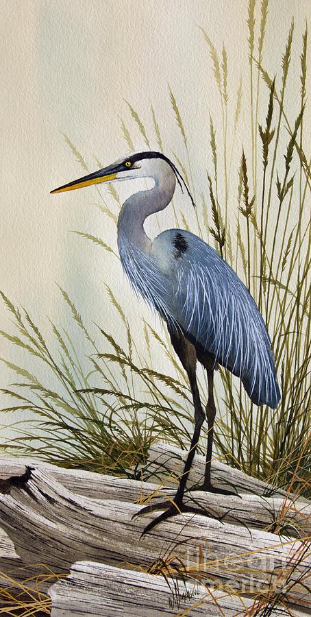 Wildlife Artwork Painting - Great Blue Heron Shore by James Williamson