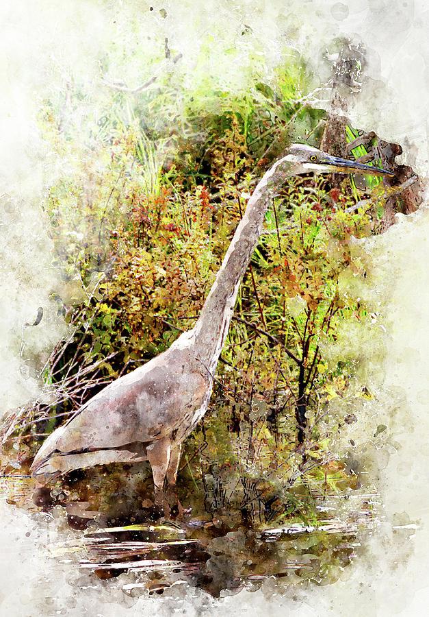 Heron Digital Art - Great Blue Heron W C by Peter J Sucy