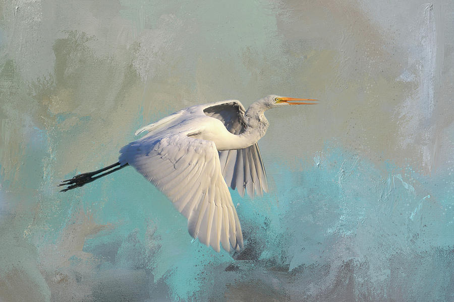 Great Egret Photograph - Great Egret 2 by Donna Kennedy