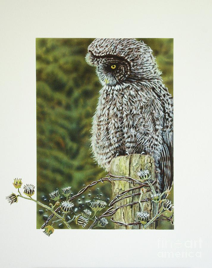Owl Painting - Great Grey Owl by Greg and Linda Halom