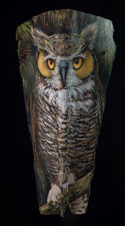 Great Horned Owl in a Pine Tree by Nancy Lauby