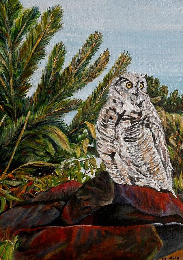 Great Horned Owl Painting - Great Horned Owl - Owl On The Rocks by Marilyn  McNish